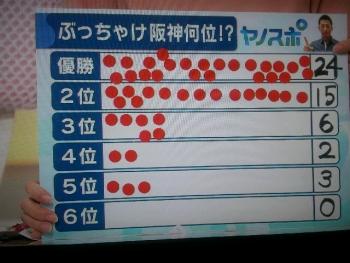 絵日記3・25ヤノスポ3