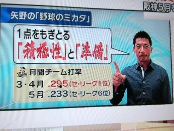 絵日記5・12ヤノスポ4