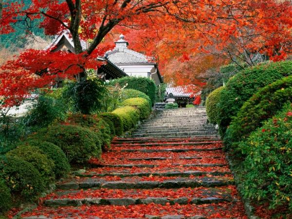 Beautiful-Kyoto-Gardens.jpg