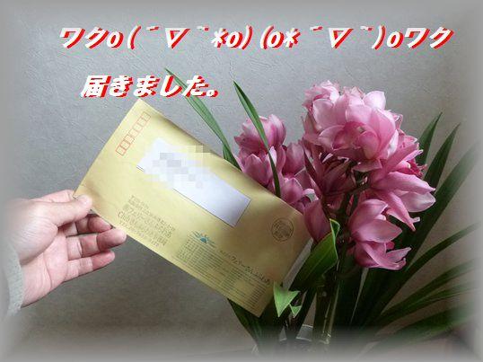 201402251.jpg