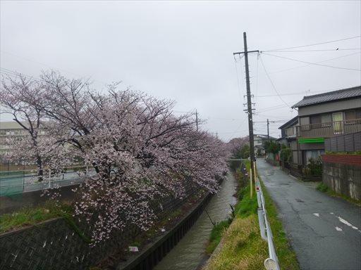 2014033001.jpg