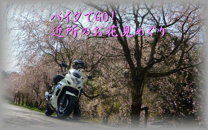 2014040500_R.jpg
