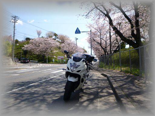 2014040502_R.jpg