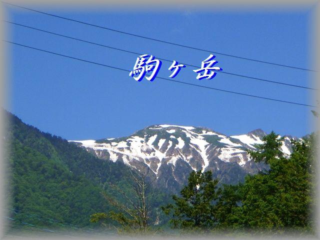 2014064501_R.jpg