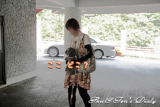 001IMG_6131.jpg