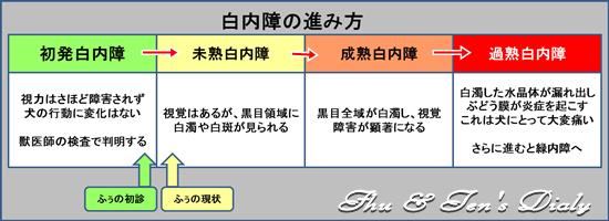 004hakunasho_20140727122154626.png