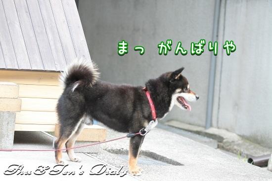 007IMG_4148.jpg