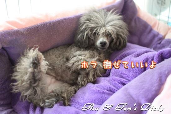 009IMG_5578.jpg