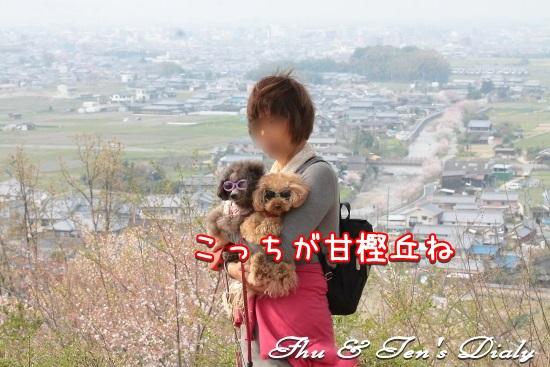 011IMG_6989.jpg