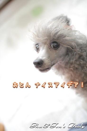 011IMG_8908_201408312246001dc.jpg