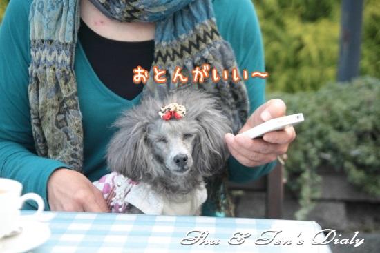 014IMG_6790.jpg