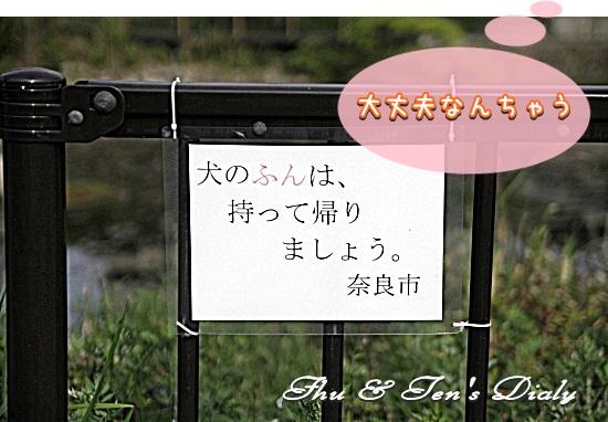 014IMG_7906.jpg