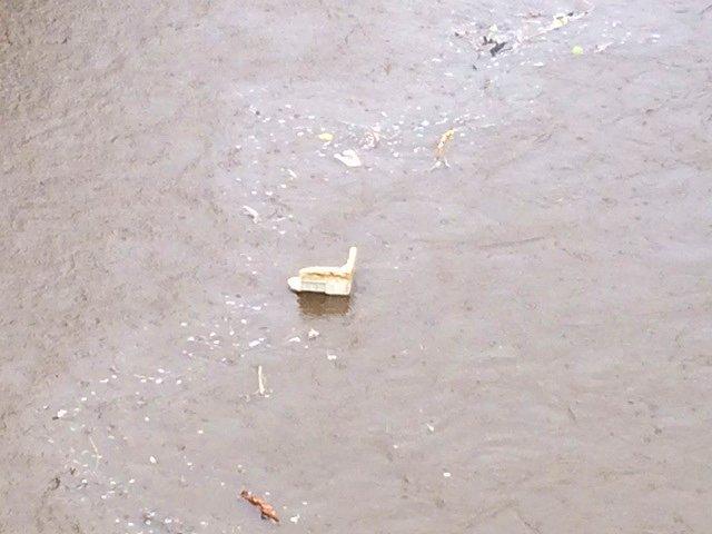 4ゴミが流れる川