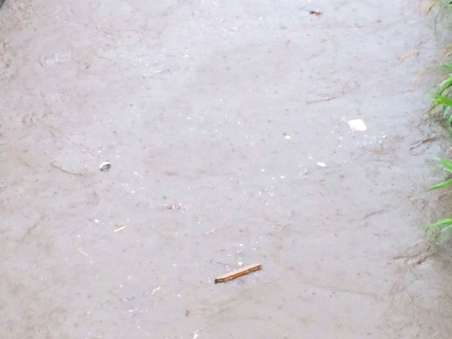 ゴミが流れる川