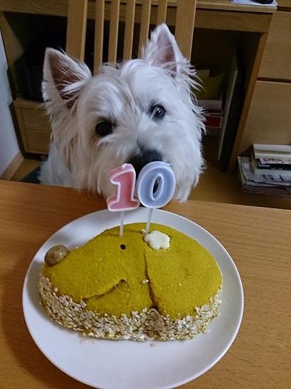 10歳ケーキ3