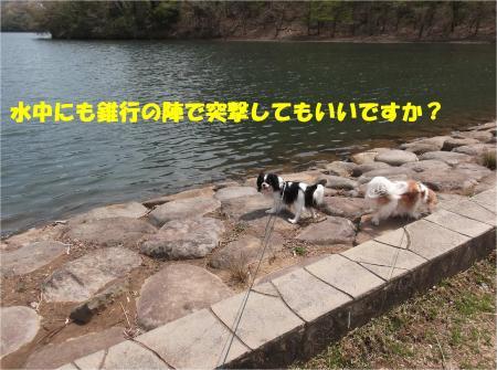 012_convert_20140414170805.jpg