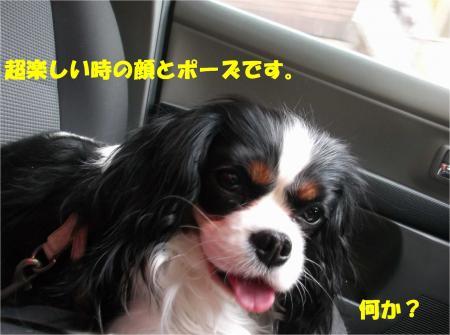 018_convert_20140414170913.jpg