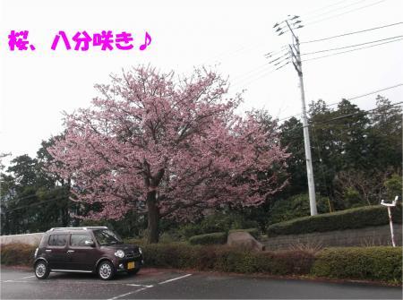 01_convert_20140213172251.jpg