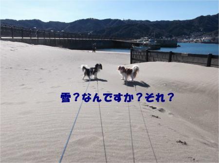 01_convert_20140217165132.jpg