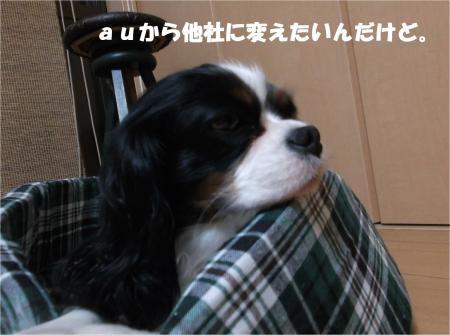 01_convert_20140219174014.jpg