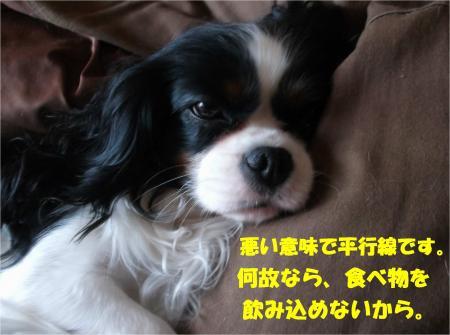 01_convert_20140305180208.jpg