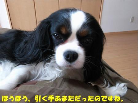 01_convert_20140401181250.jpg