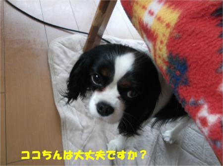 01_convert_20140422184907.jpg