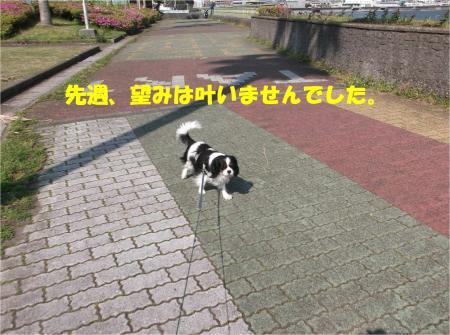 01_convert_20140428171532.jpg