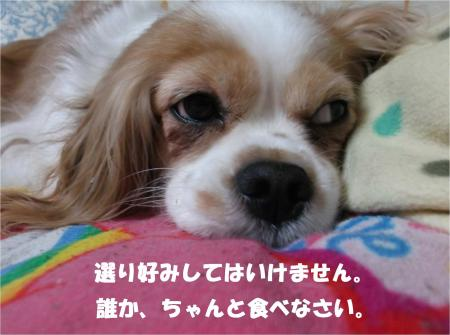 01_convert_20140521181610.jpg