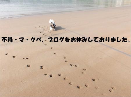 01_convert_20140604193236.jpg