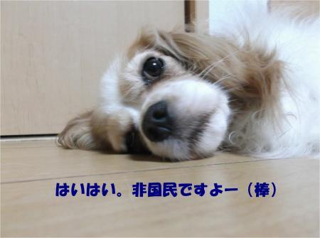01_convert_20140617182442.jpg