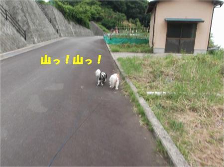 01_convert_20140623160831.jpg