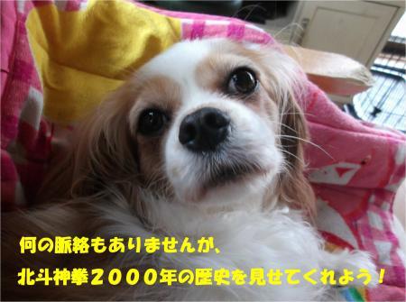 01_convert_20140624185156.jpg