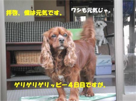01_convert_20140626181401.jpg