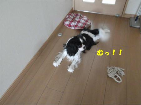 01_convert_20140710180928.jpg