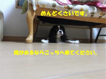01_convert_20140715181349.jpg