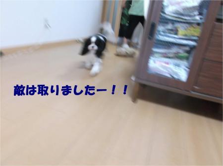 01_convert_20140722174935.jpg