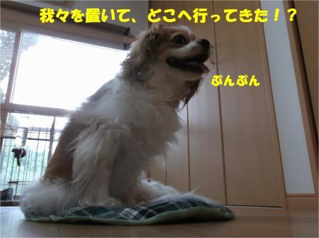 01_convert_20140804175404.jpg