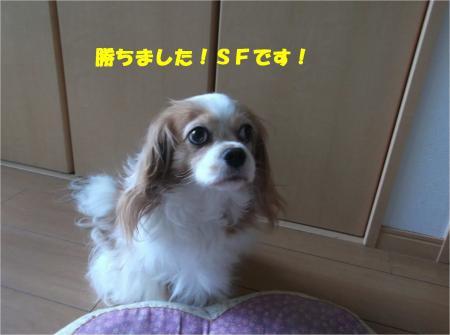 01_convert_20140904180534.jpg
