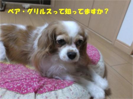 01_convert_20140905174714.jpg