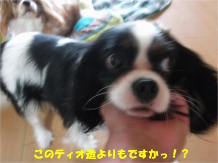 01_convert_20140910175855.jpg