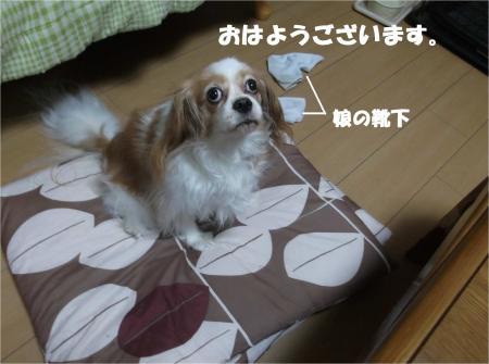 01_convert_20140912173421.jpg