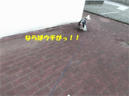 02_convert_20140212205851.jpg