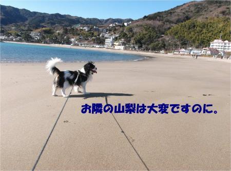 02_convert_20140217165143.jpg