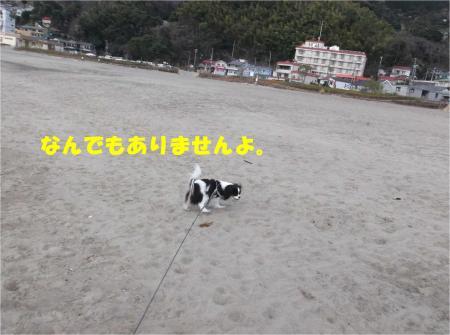 02_convert_20140224173725.jpg