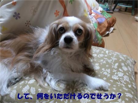 02_convert_20140317165524.jpg
