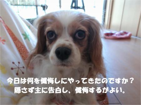 02_convert_20140322130546.jpg