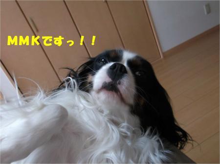 02_convert_20140401181301.jpg