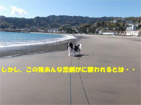 02_convert_20140407091035.jpg