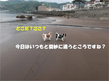 02_convert_20140429171628.jpg